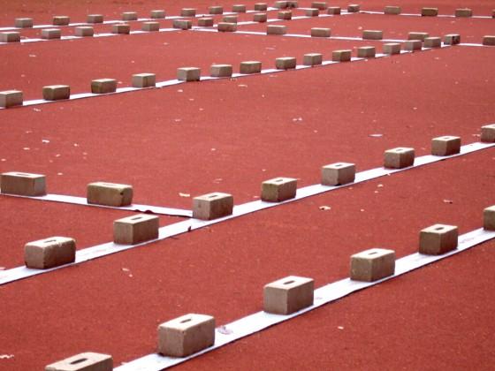 Linienabdeckung aus Polyethylen-Bändern 3 Rollen á 50 m